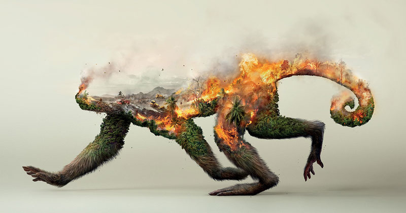 Powerful Illustrations That Show Destroying Nature Destroys Life