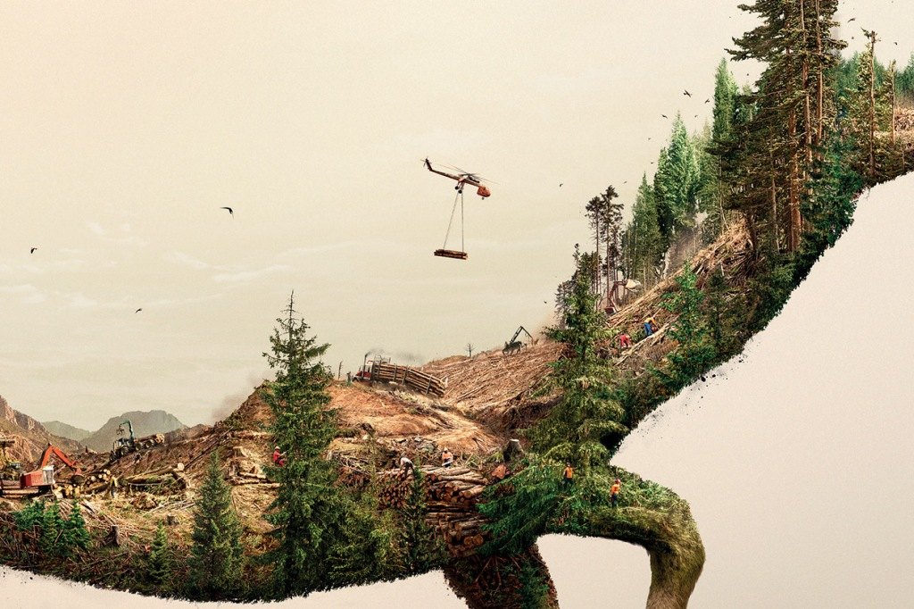 Illustrations Show How Destroying Nature Destroys Life (7)