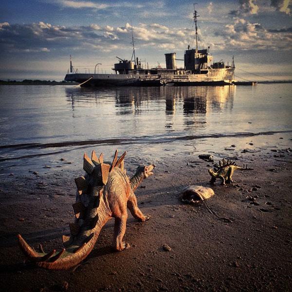 toy dinosaur photo series by jorge saenz (6)