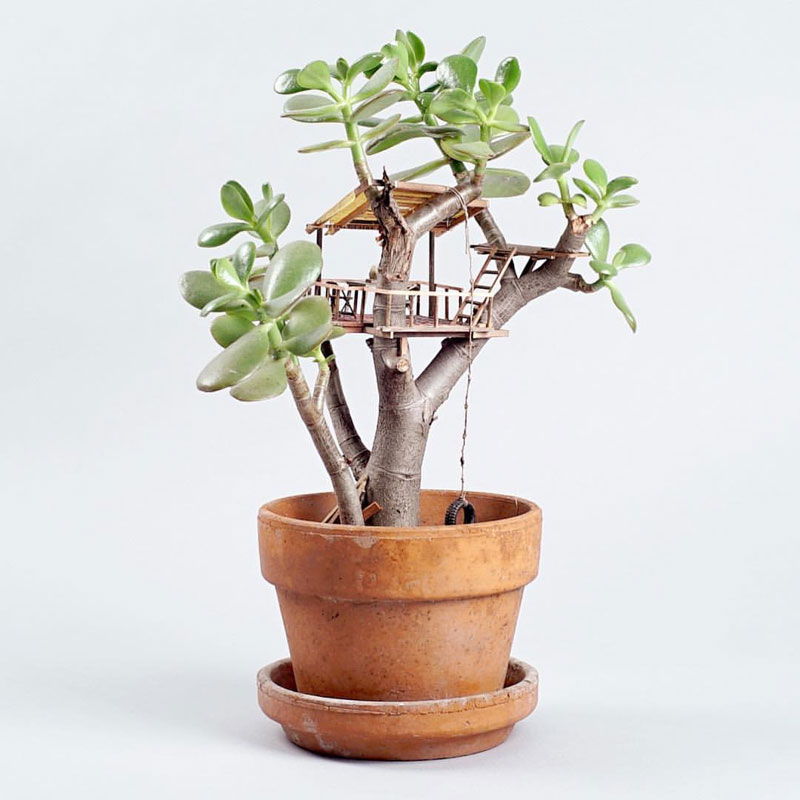 treehouses for house plants by jedediah corwyn voltz (5)
