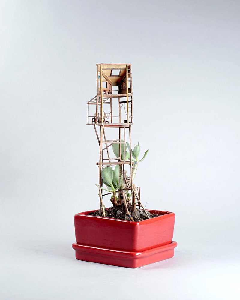 treehouses for house plants by jedediah corwyn voltz (9)