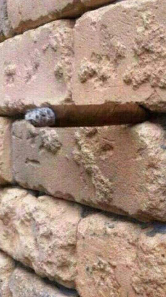 just another brick in the wall illusion (1)