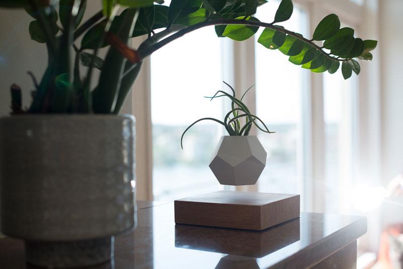 Floating levitating planters lyfe 13 twistedsifter for Levitating plant