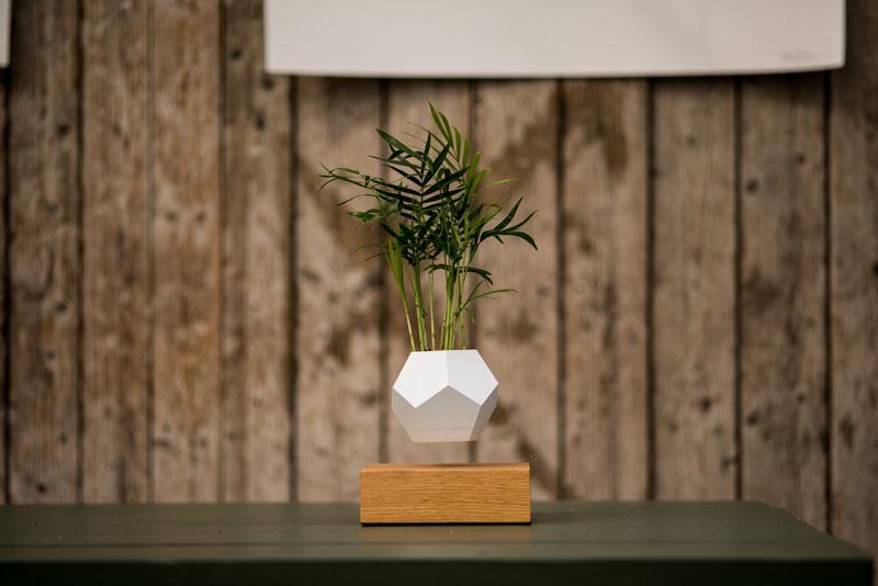 floating levitating planters lyfe (3)