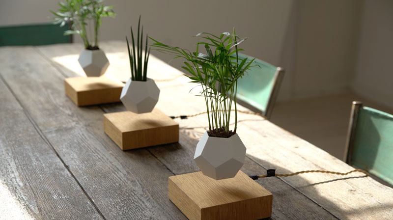 These floating pots let your house plants levitate and for Unusual home decor uk