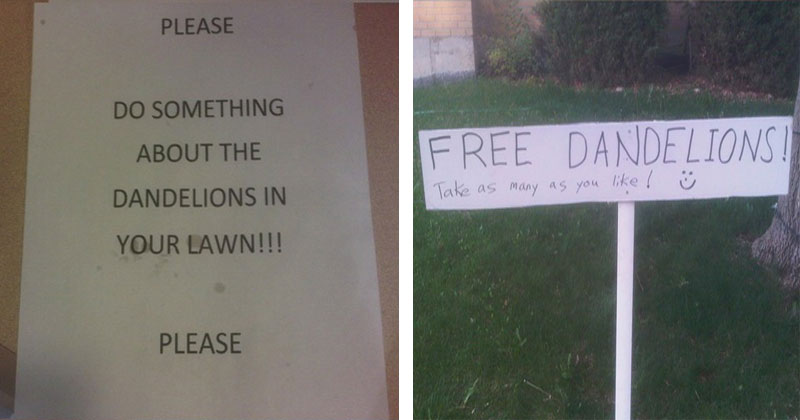 The Shirk Report – Volume 373