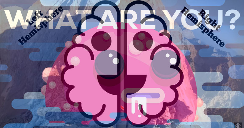 Your Brain is Two and What Makes You,You