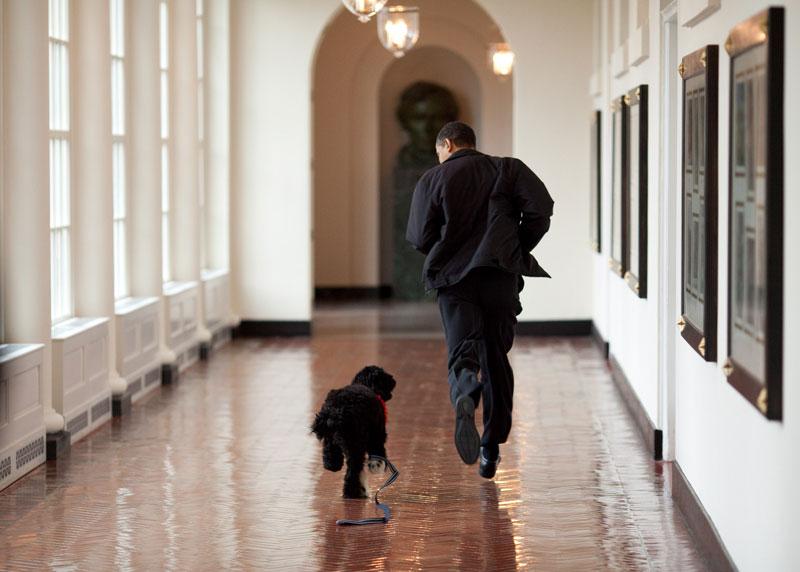 pete souza white house obama favorites (8)