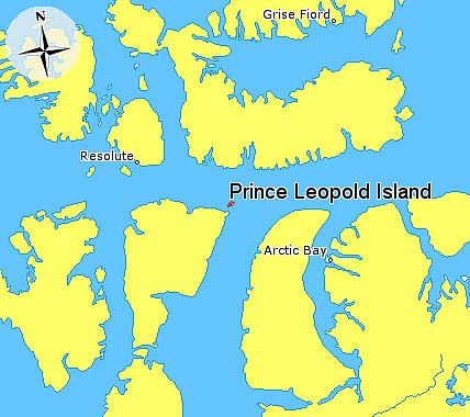 prince leopold island nunavut canada arctic island bird sanctuary (3)