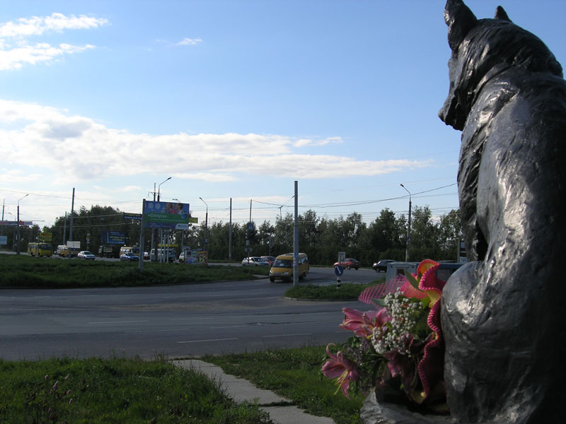 loyal Dog Monument in tolyatti russia (1)