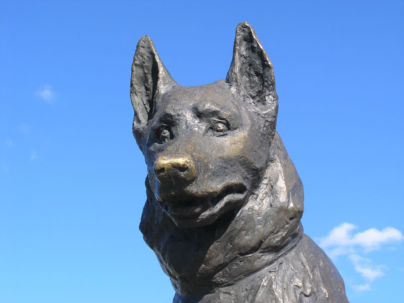 There's a Statue in Russia Dedicated to the Most Loyal Dog a City Has Ever Known
