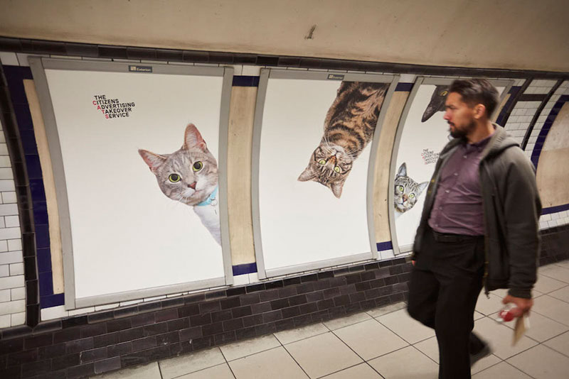 Citizen Campaign to Replace All Ads with Cats Triumphantly Launches inLondon