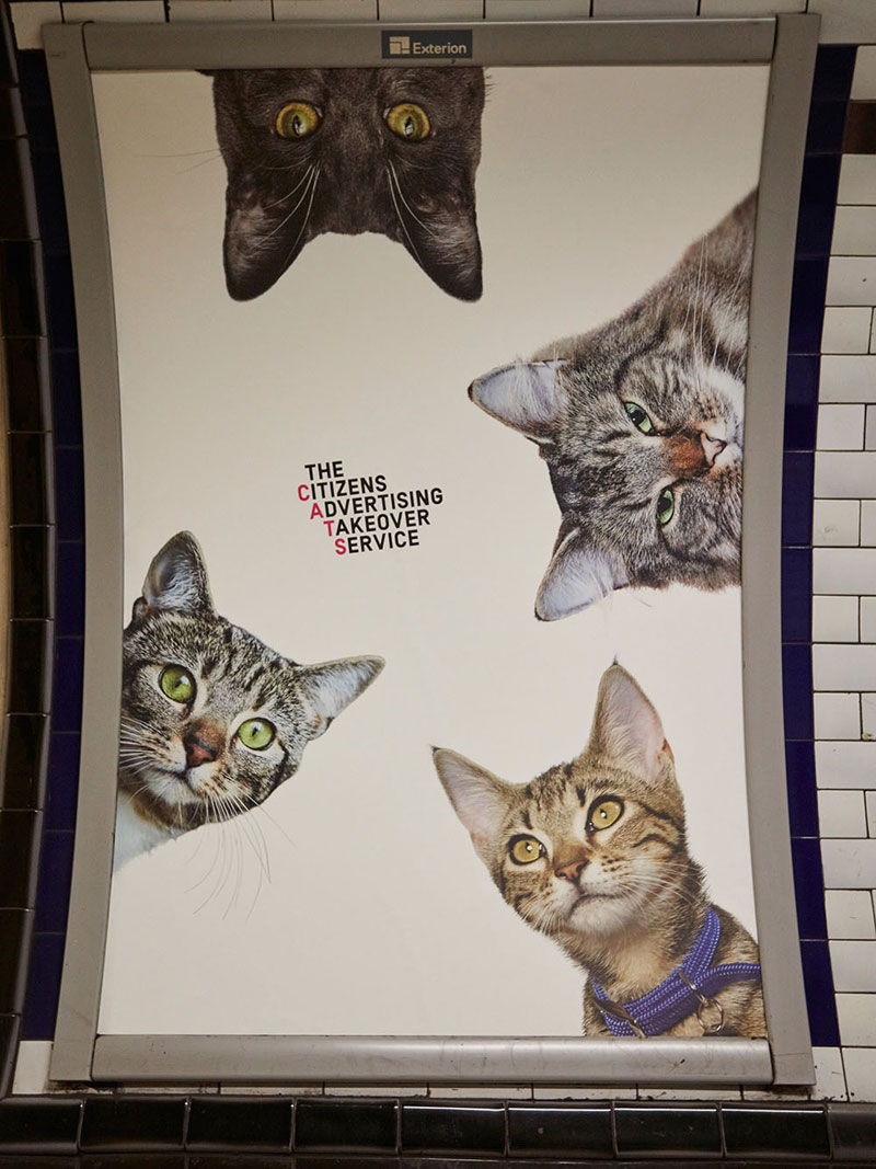 ads replaced with cats in london 8 Citizen Campaign to Replace All Ads with Cats Triumphantly Launches in London