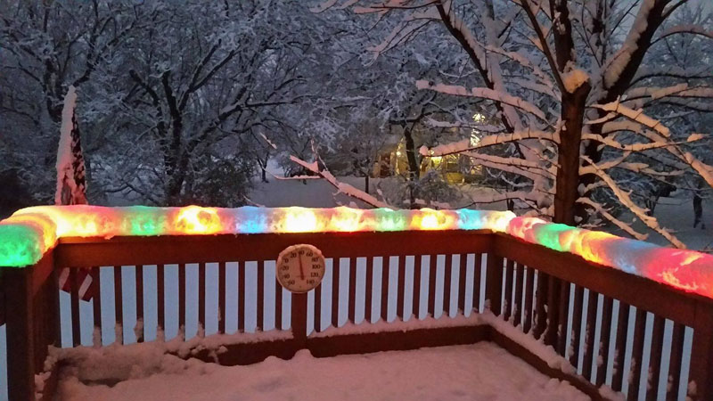 christmas lights encased in snow after snowstorm in chicago Picture of the Day: Outdoor Lights After a Snowstorm in Chicago