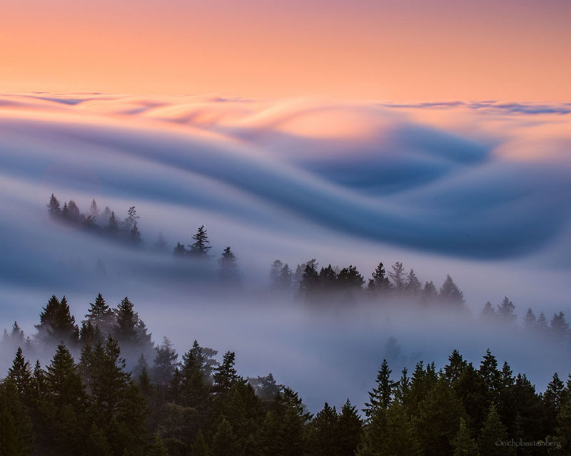 fog waves by nick steinberg 3 Photographer Captures Fog Waves That Look Like Oceans in the Sky