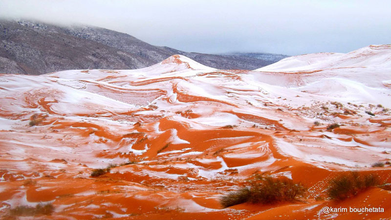 rare snowfall in sahara desert december 2016 karim bouchetata 2 Picture of the Day: Snow in the Sahara for First Time in 40 Years