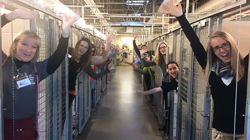 This Shelter Got Every Pet Adopted and Jumped Into the Empty Kennels to Celebrate