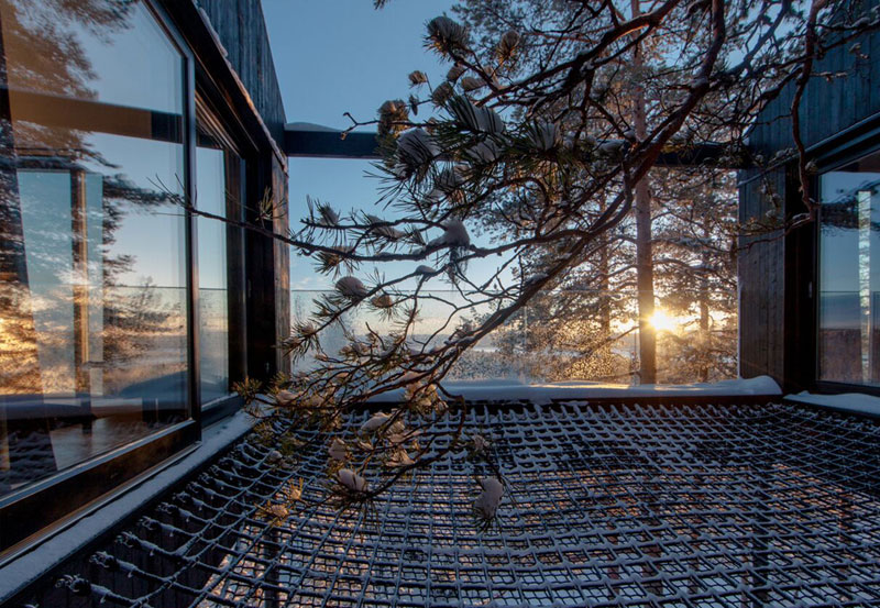 treehotel sweden the 7th room 6 The Newest Room at Swedens Treehotel has an Outdoor Net With a Tree Through It