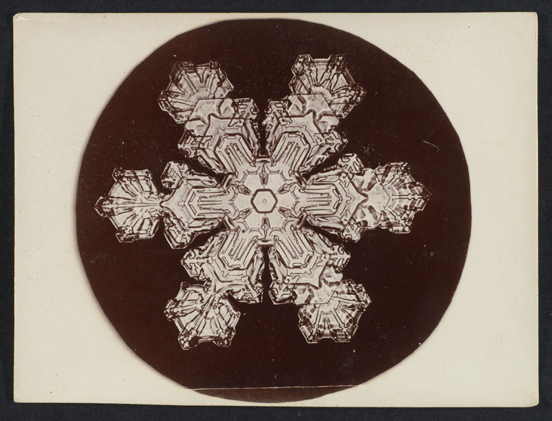 first ever photos of snowflakes by wilson alwyn bentley 11 In 1885 Wilson Bentley Took the First Ever Photographs of Snowflakes (23 Photos)