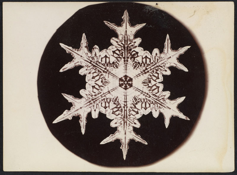 first ever photos of snowflakes by wilson alwyn bentley 15 In 1885 Wilson Bentley Took the First Ever Photographs of Snowflakes (23 Photos)
