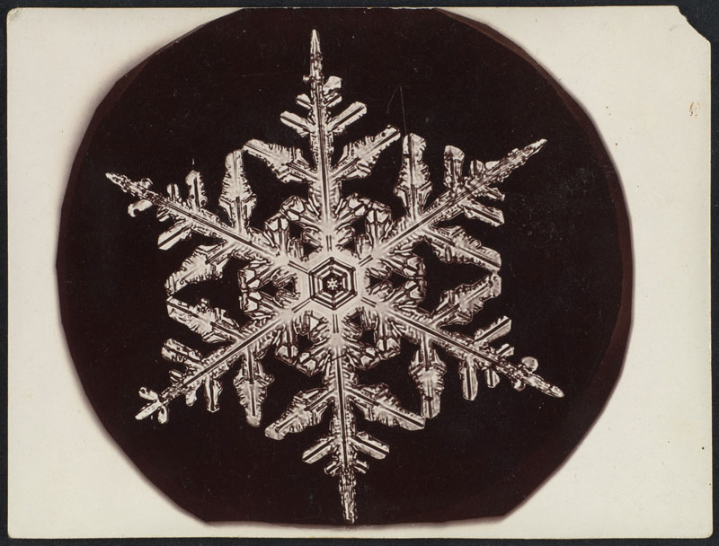 first ever photos of snowflakes by wilson alwyn bentley 16 In 1885 Wilson Bentley Took the First Ever Photographs of Snowflakes (23 Photos)