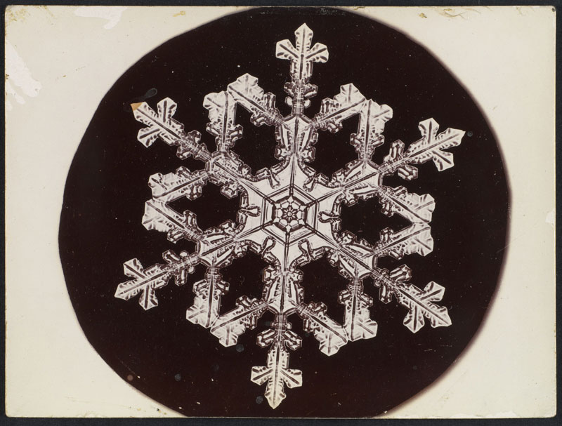 first ever photos of snowflakes by wilson alwyn bentley 17 In 1885 Wilson Bentley Took the First Ever Photographs of Snowflakes (23 Photos)