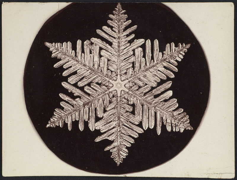first ever photos of snowflakes by wilson alwyn bentley 18 In 1885 Wilson Bentley Took the First Ever Photographs of Snowflakes (23 Photos)