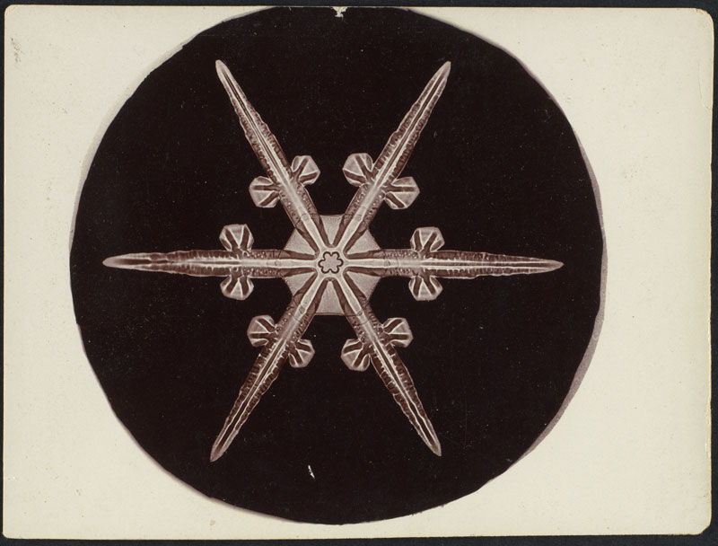 first ever photos of snowflakes by wilson alwyn bentley 19 In 1885 Wilson Bentley Took the First Ever Photographs of Snowflakes (23 Photos)