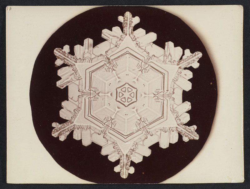 first ever photos of snowflakes by wilson alwyn bentley 2 In 1885 Wilson Bentley Took the First Ever Photographs of Snowflakes (23 Photos)