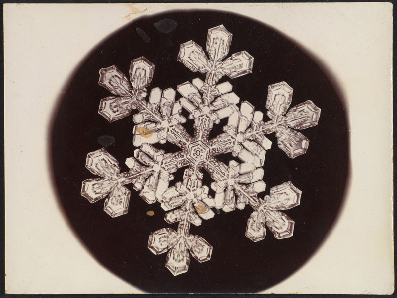 first ever photos of snowflakes by wilson alwyn bentley 20 In 1885 Wilson Bentley Took the First Ever Photographs of Snowflakes (23 Photos)