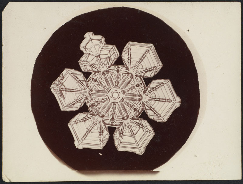 first ever photos of snowflakes by wilson alwyn bentley 22 In 1885 Wilson Bentley Took the First Ever Photographs of Snowflakes (23 Photos)