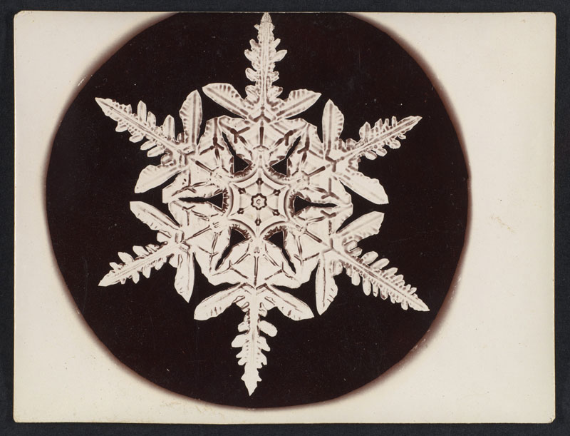 first ever photos of snowflakes by wilson alwyn bentley 3 In 1885 Wilson Bentley Took the First Ever Photographs of Snowflakes (23 Photos)