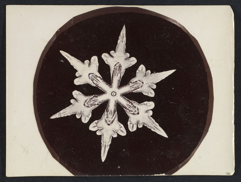 first ever photos of snowflakes by wilson alwyn bentley 7 In 1885 Wilson Bentley Took the First Ever Photographs of Snowflakes (23 Photos)