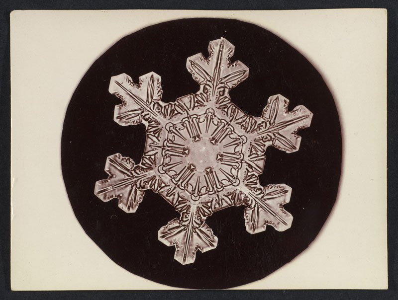first ever photos of snowflakes by wilson alwyn bentley 8 In 1885 Wilson Bentley Took the First Ever Photographs of Snowflakes (23 Photos)