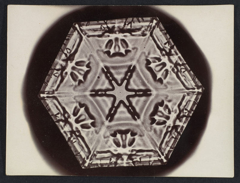 first ever photos of snowflakes by wilson alwyn bentley 9 In 1885 Wilson Bentley Took the First Ever Photographs of Snowflakes (23 Photos)