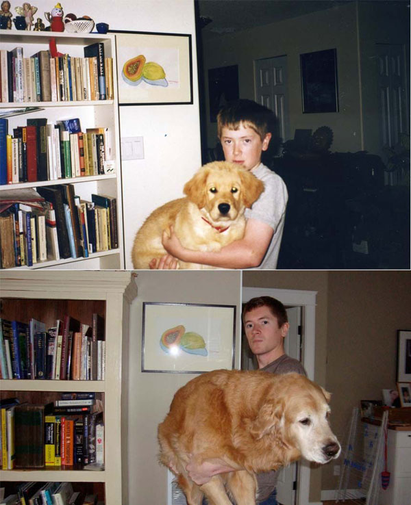 puppies dogs then and now 4 18 Then and Now Photos of Puppies/Dogs That Will Restore Your Faith in Everything