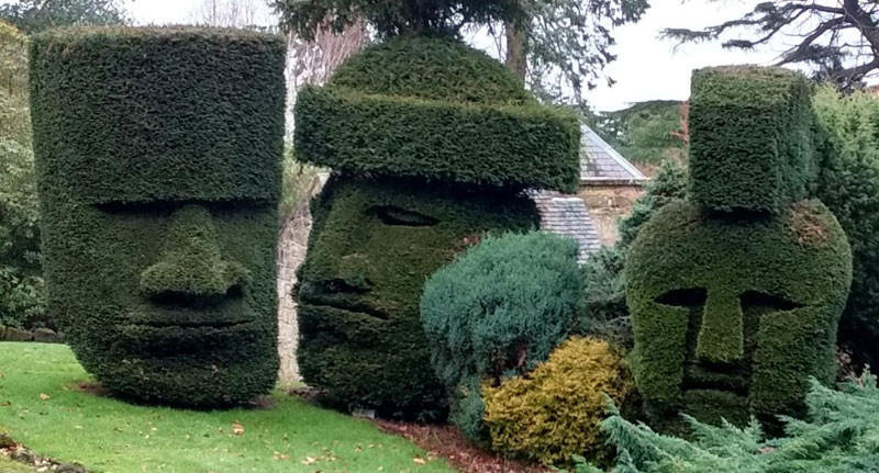 headges dalmeny house edinburgh scotland1 Picture of the Day: Headges