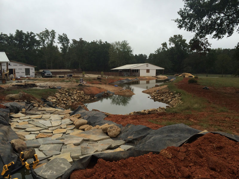 instead of an in ground swimming pool this guy built his own natural swim pond 15 Forget an In Ground Swimming Pool, this Guy Built His Own Natural Swim Pond!