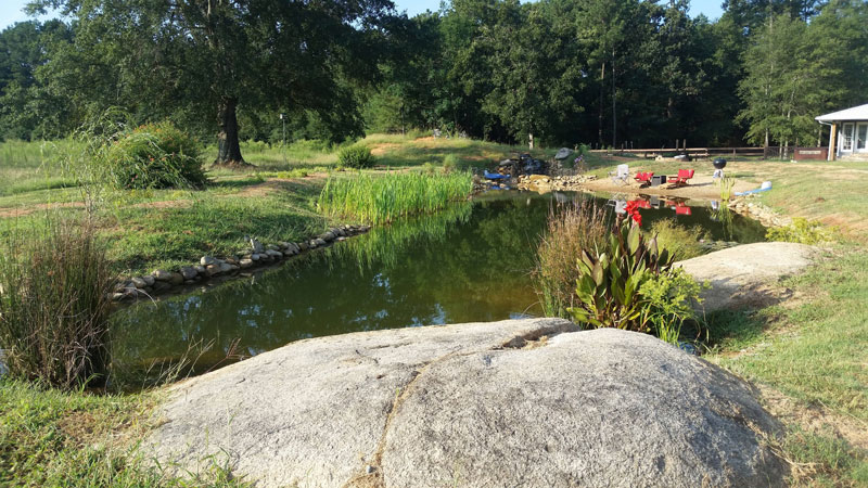 instead of an in ground swimming pool this guy built his own natural swim pond 24 Forget an In Ground Swimming Pool, this Guy Built His Own Natural Swim Pond!