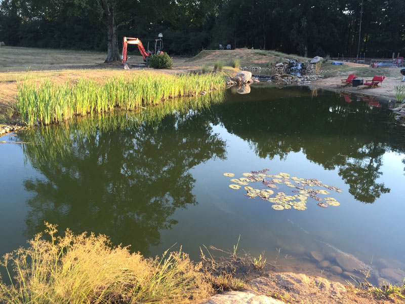 Forget an in ground swimming pool this guy built his own for Bass pond construction