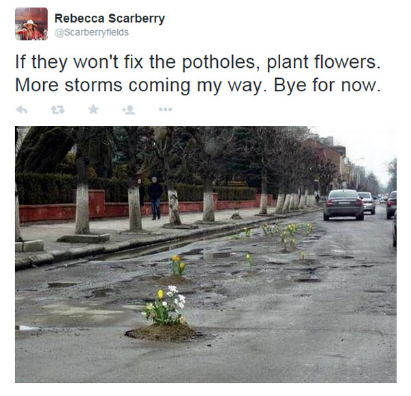 planting flowers in potholes 6 People are Planting Flowers in Potholes Because Cities Arent Fixing Them