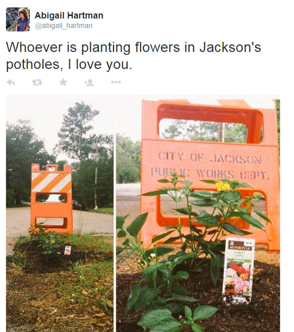 planting flowers in potholes 7 People are Planting Flowers in Potholes Because Cities Arent Fixing Them