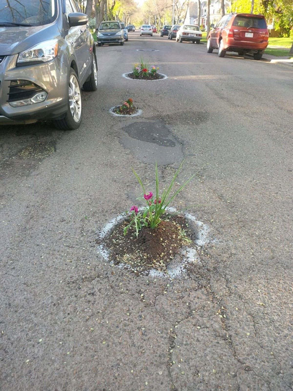 planting flowers in potholes 8 People are Planting Flowers in Potholes Because Cities Arent Fixing Them