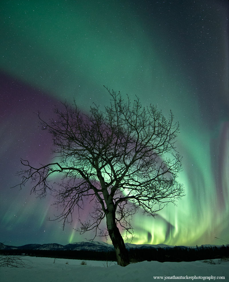 33 best auroras nasa has ever featured 18 The 33 Best Aurora Photos NASA Has Ever Featured