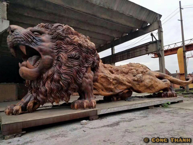 lion carved from single tree trunk by dengding rui yao 2 Incredible Wooden Lion Carved from a Single Tree (11 photos)