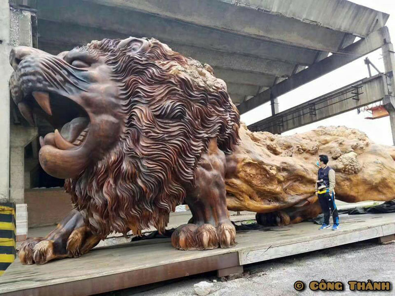 lion carved from single tree trunk by dengding rui yao 4 Incredible Wooden Lion Carved from a Single Tree (11 photos)
