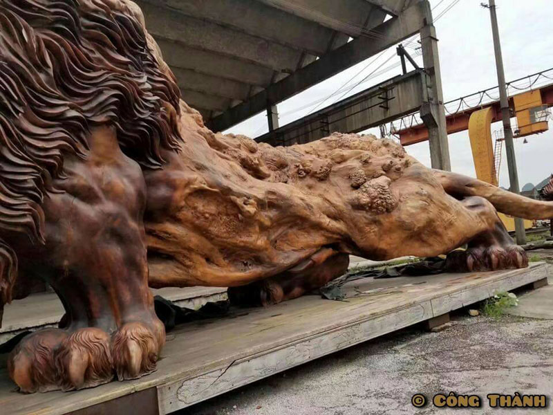 lion carved from single tree trunk by dengding rui yao 5 Incredible Wooden Lion Carved from a Single Tree (11 photos)