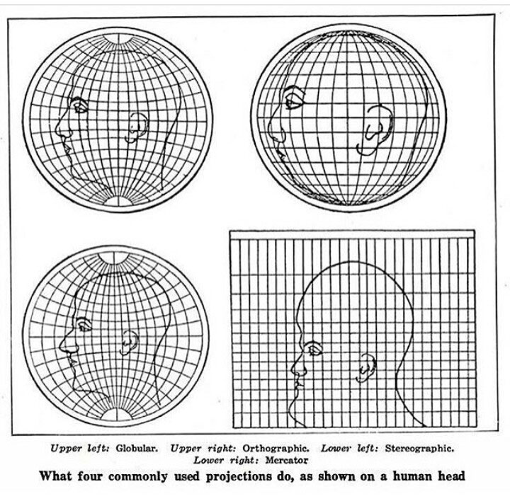 what four commonly used map projections do to a human head 8 Random Maps That Make You Go Hmmm