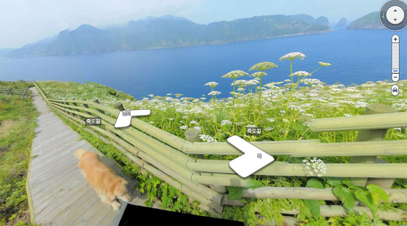 doggo photobombs every frame in this south korean island street view tour 7 Doggo Photobombs Every Frame in this South Korean Island Street View Tour