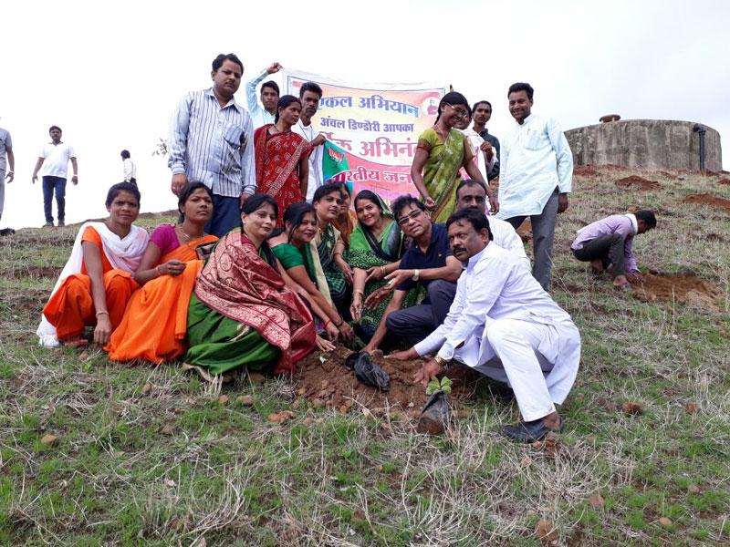 1 5m volunteers in india plant record breaking 66 million trees in 12 hours 1 1.5m Volunteers in India Plant Record Breaking 66 Million Trees in 12 Hours